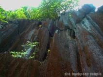 Coron's unique karst cliffs