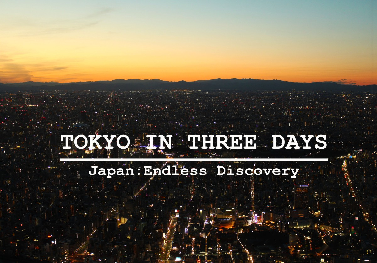 Japan Tokyo In Three Days On Budget The Backpack Couple